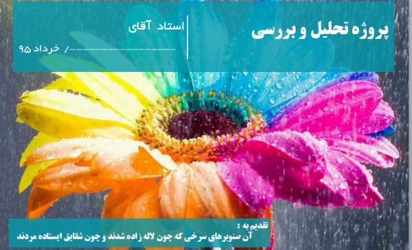 پروژه تحلیل و بررسی محله قصرالدشت شیراز