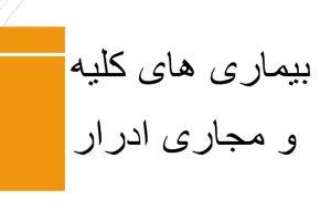 بیماری های کلیه و مجاری ادرار توضیحات به صورت کامل - فروشگاه ایرانیان شهرساز