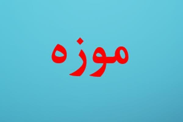دانلود پاورپوینت تعریف موزه - فروشگاه ایرانیان شهرساز به صورت رایگان